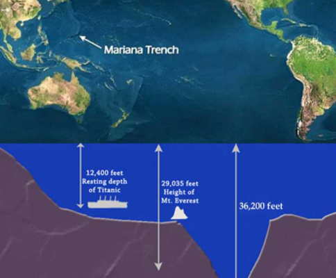 """7 """"Incredible Facts Under The World's Oceans"""""""